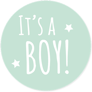 Mint sluitsticker it's a boy